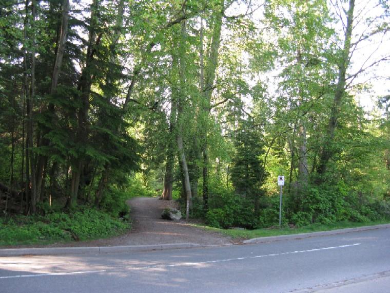 Stanley park lees trail